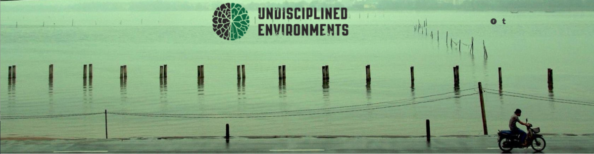 Undisciplined Environments goes live