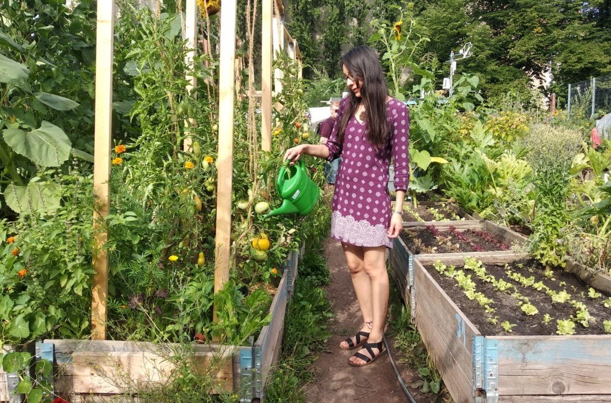 Doing fieldwork on community gardens in Berlin
