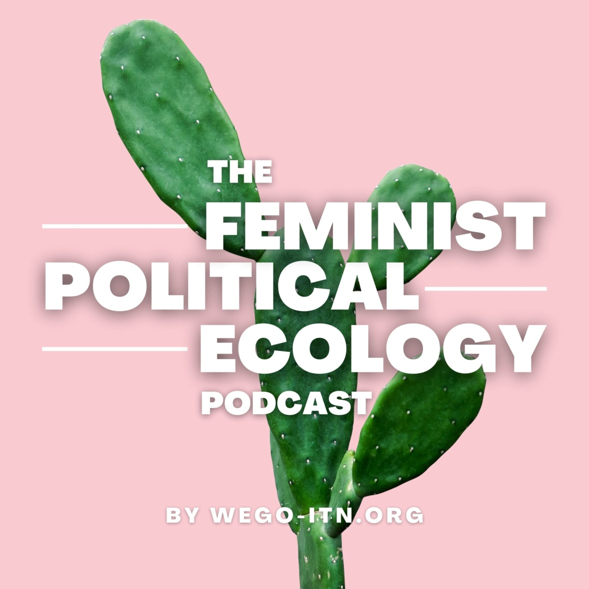 """""""The Feminist Political Ecology Podcast"""", by WEGO, is out"""