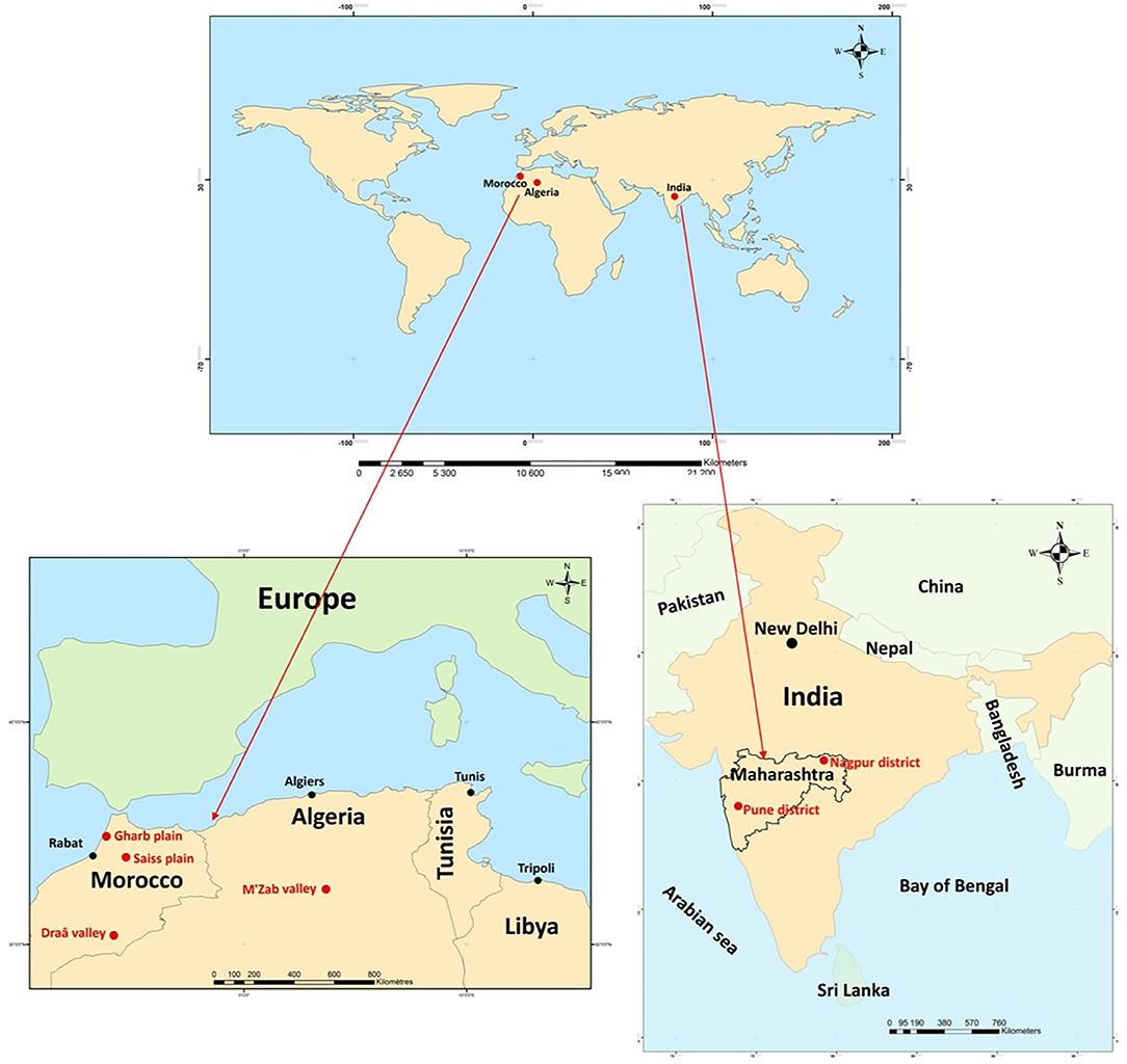 New article: 'COVID-19 in Rural India, Algeria, and Morocco'